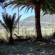 Pláž z kempu cca 100m